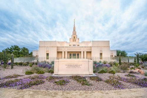 Phoenix Temple photo standing behind a purple flower bed.