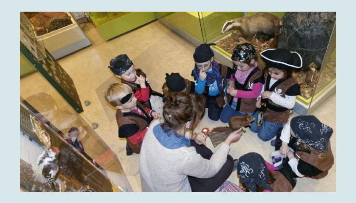 naturkundemuseum kleine piraten schatzsuche