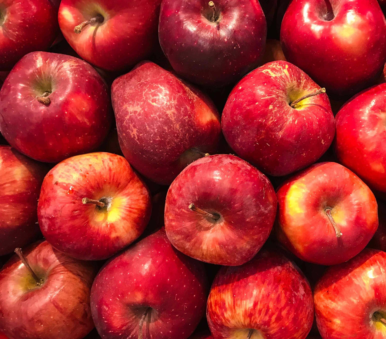 Cyclosas - Pomme hiver vitamine de saison hivernale