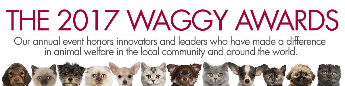 Tailwaggers Foundation