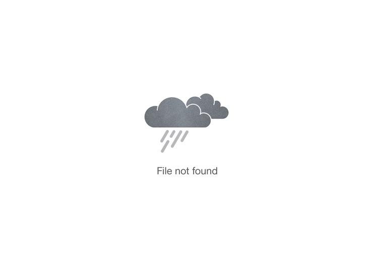 hair stylist creating an updo