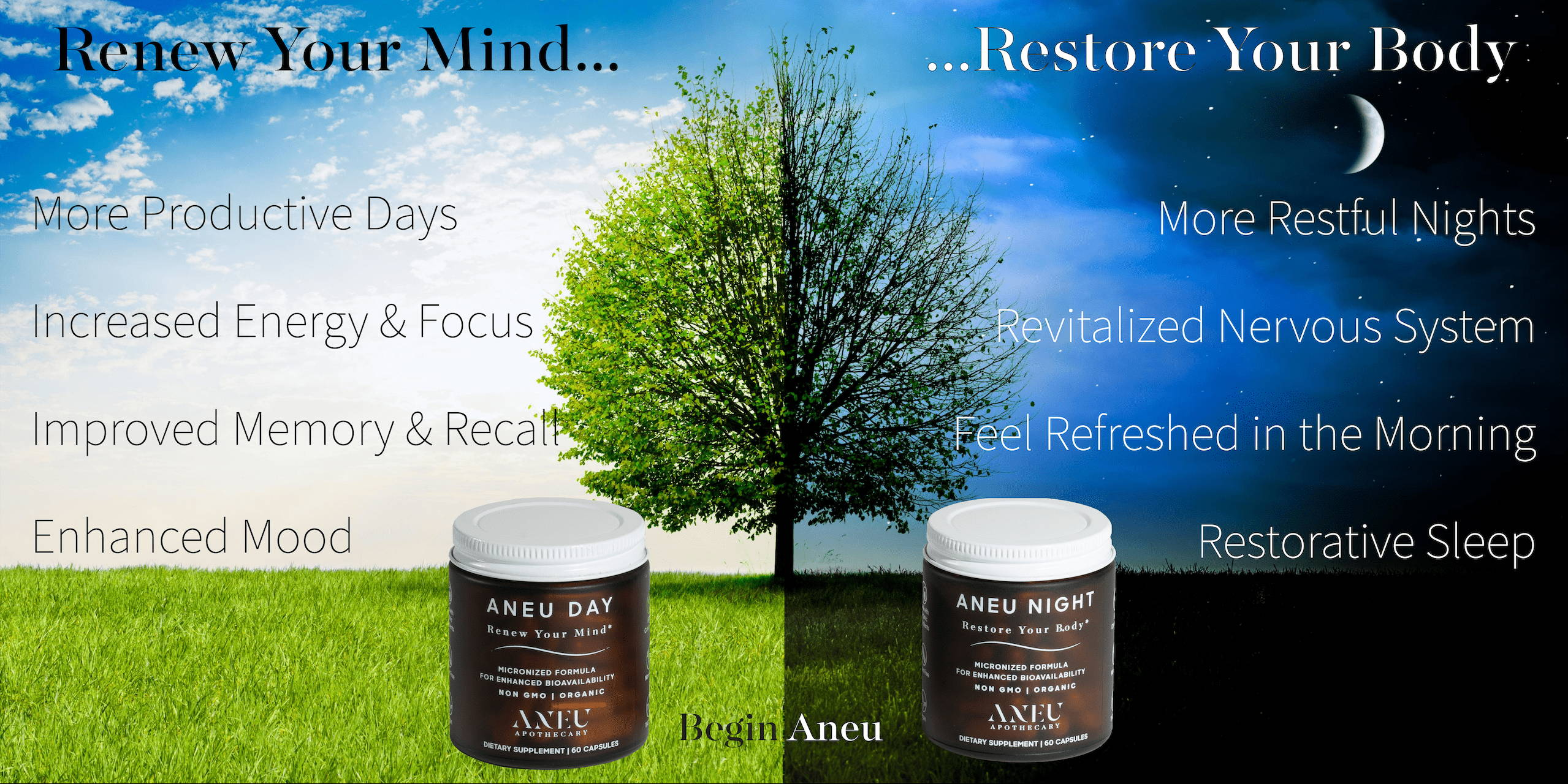 aneu day in a day time scene with green tree and benefits next to aneu night in a night time scene with dark tree and benefits