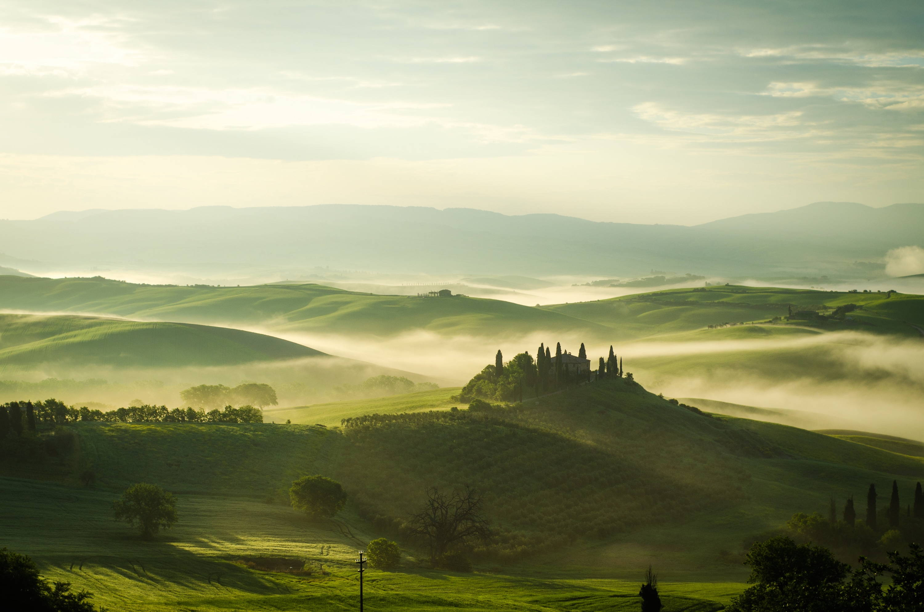 Perfect October fog conditions for growing Nebbiolo in a Northern Italy valley.