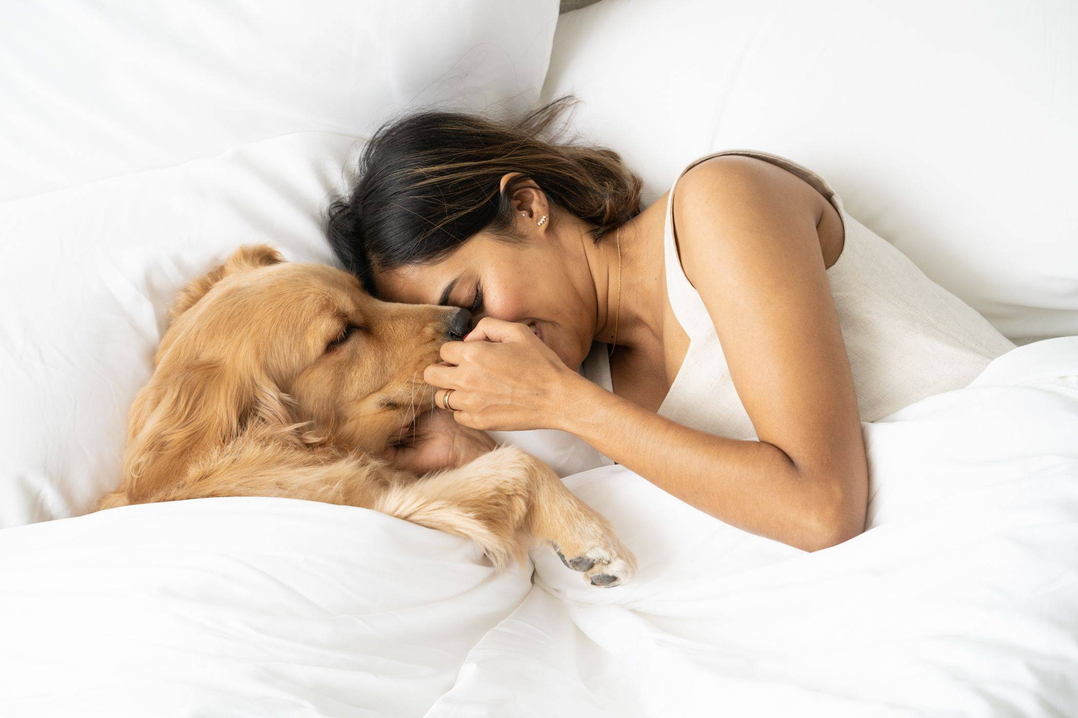 Dog and woman cuddled up in bed