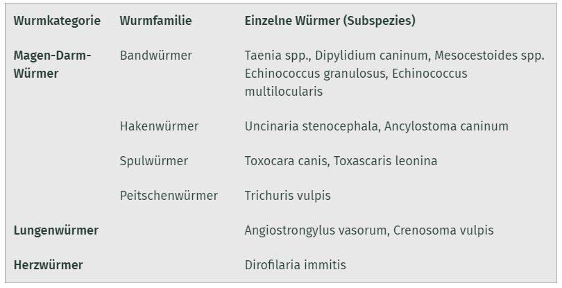 Bild - Wurmkategorien, Wurmfamilien und einzelne Würmer