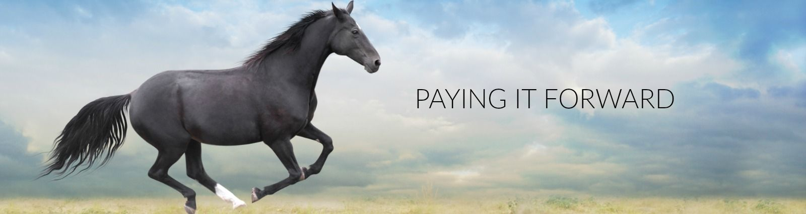 BRL Equine paying it forward