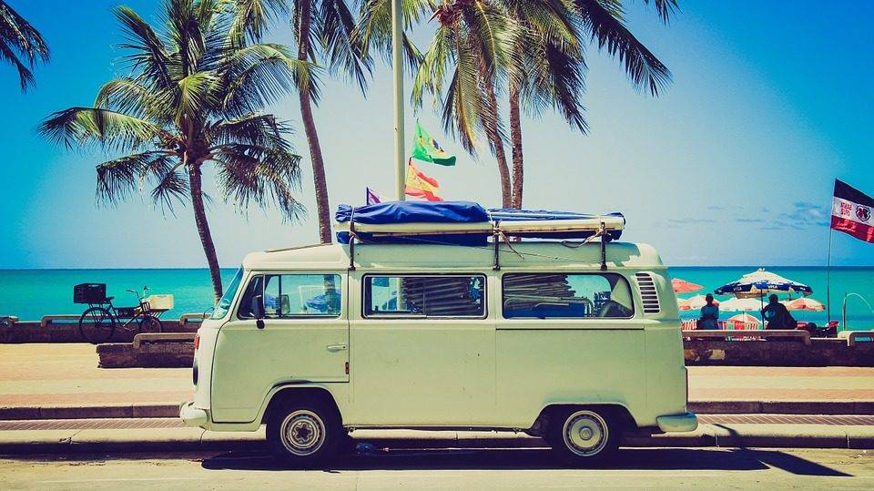 Reisekrankheiten des Hundes - Die Mitbringsel aus dem Sommerurlaub