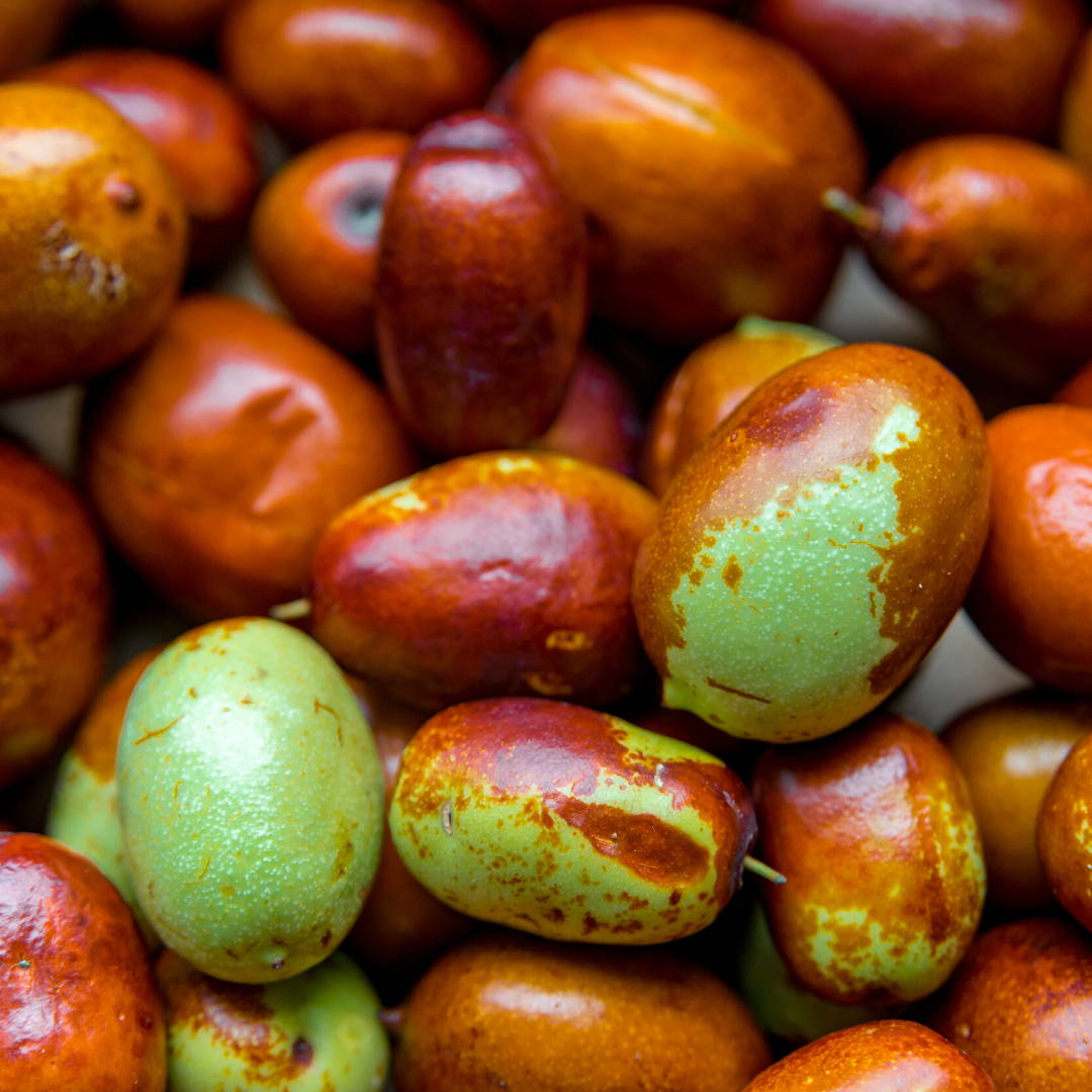 Jojoba Seed Extract Skin care