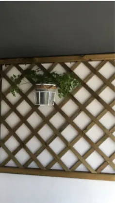 Flowerpot holder-iron-planter-support for balcony-balco-testimonial-4