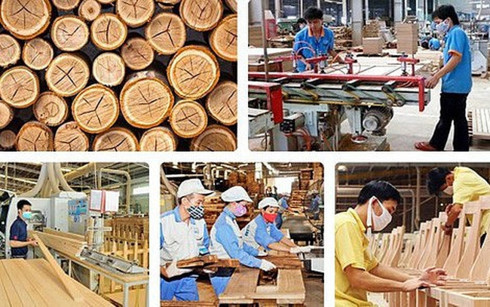 Vietnam looks to boost timber exports to EU