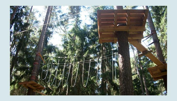 bester geburtstagde kletterwald weiherhof bäume platformen kletterwald stationen