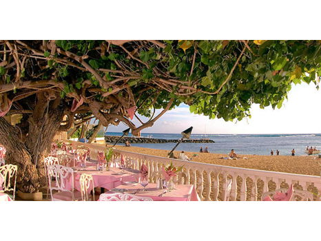 Hau Tree Lanai Restaurant - $50 Gift Certificate for Lunch for Two