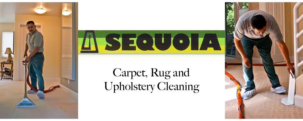 Sequoia Carpet, Rug, Upholstery & Drapery Cleaners