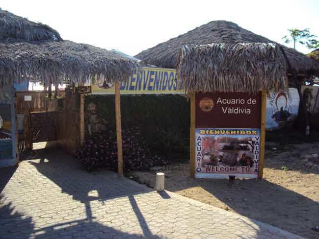 Acuario de Valdivia-Valdivia