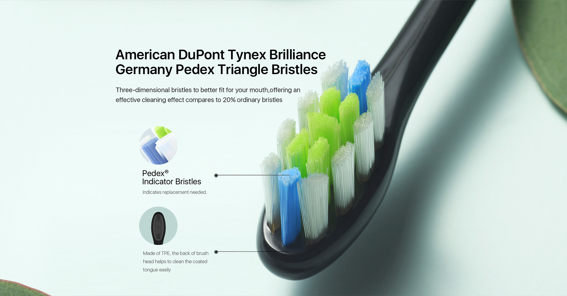 American DuPont Tynex Brilliance Germany Pedex Triangle Bristles