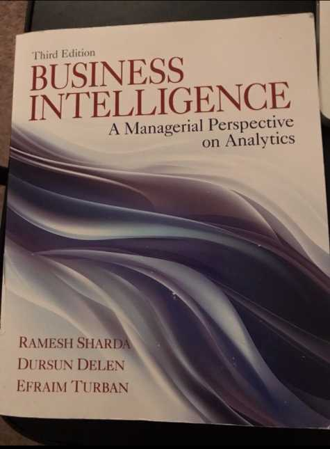RENTERS BAY: Business Intelligence Textbook