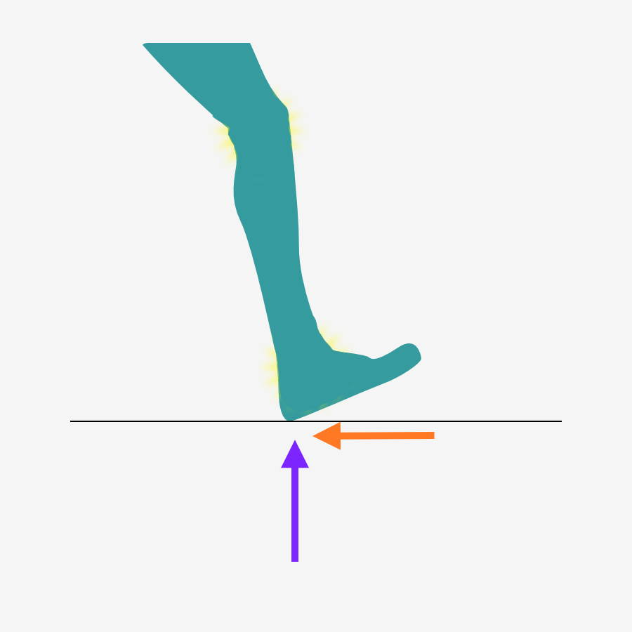foot ground reaction forces newtons 3rd law horizontal and vertical