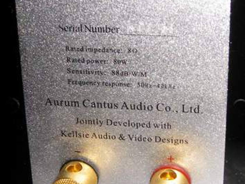 Aurum Cantus Leisure 2se speakers