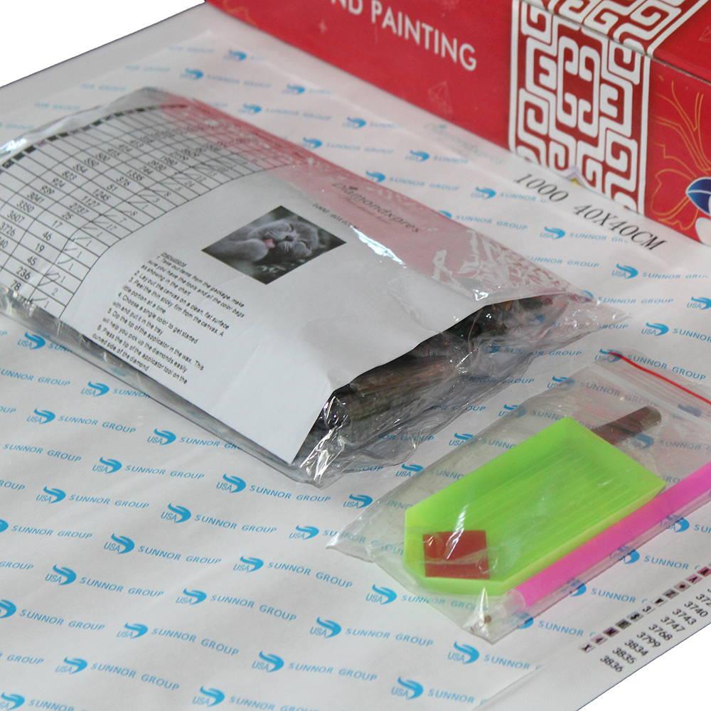 Diamond Painting Kit Ready to Ship