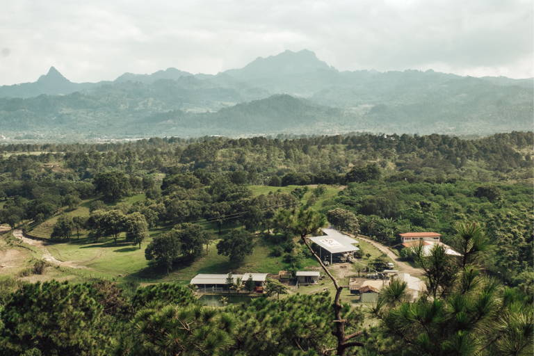 The Finca Terrerito Coffee Farm in Honduras.