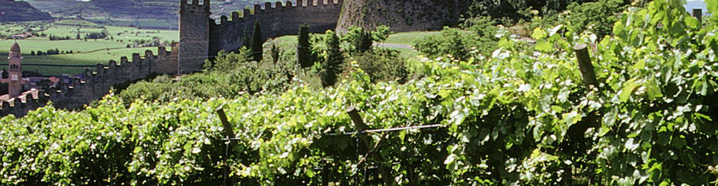 Путешествие в Средневековье: укреплённый городок Соаве и его замок