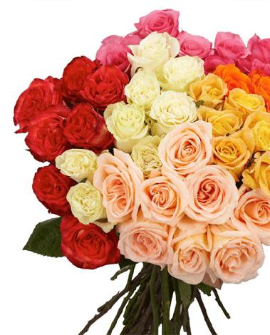 hf Pick Me Bouquet