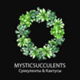 Mystic Succulents