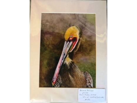 "Joan Dupuy ""Brown Pelican"""
