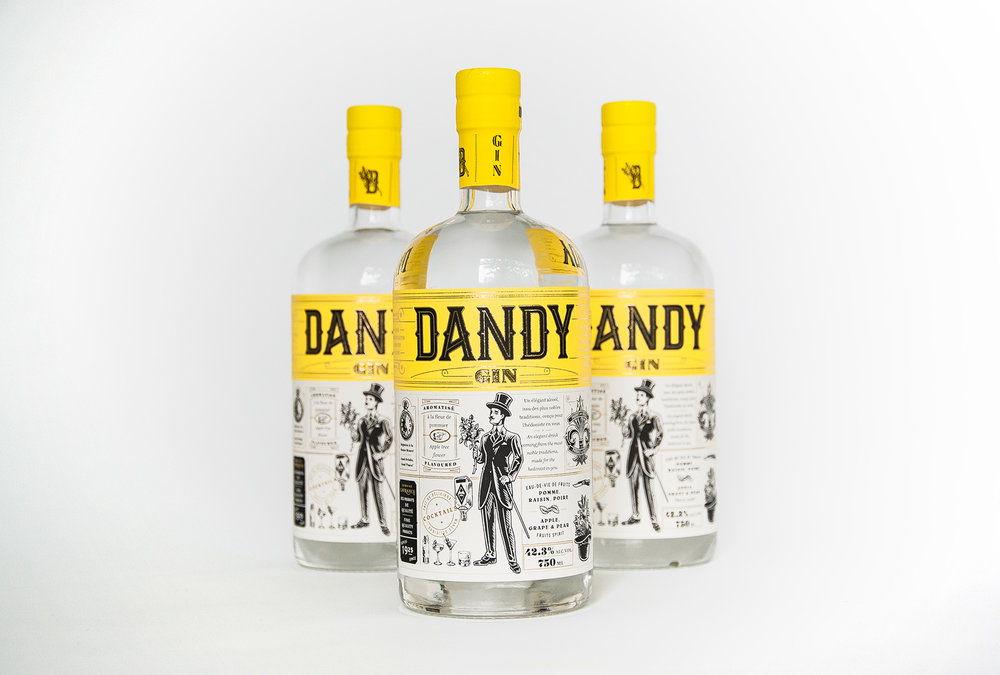 Dandy-01.jpg