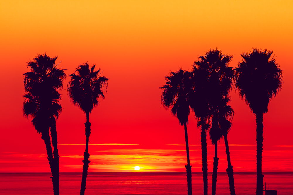 Background 320 Days of Sun Photo by Nathaniel Miller