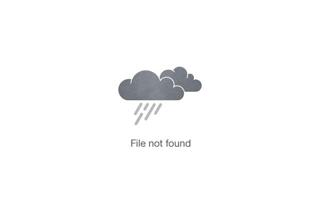 Hike Up Mt. Kenya