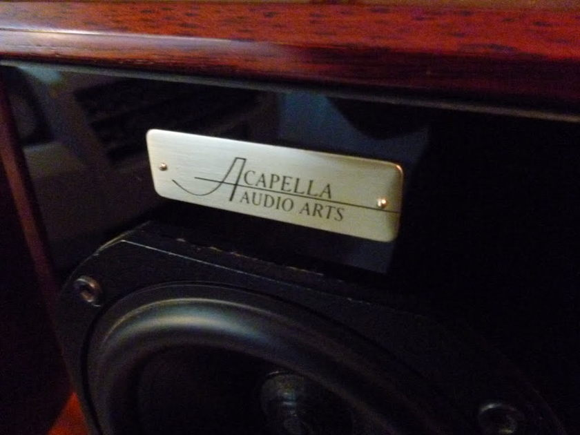 ACAPELLA FIDELIO BEST MONITORS AUCTION VERY RARE 10000 $ LIST PRICE BETTER THAN ROGERS DUETTE