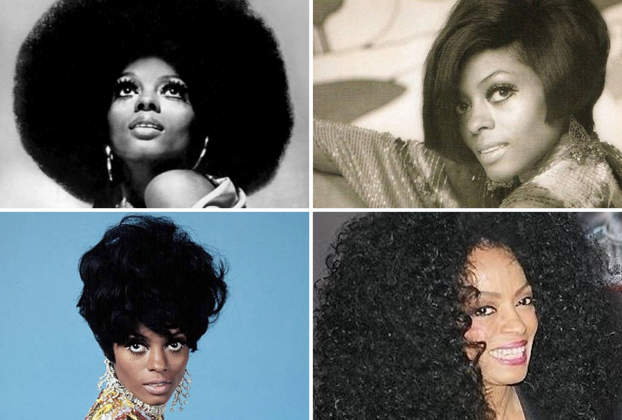 diana ross iconic wigs