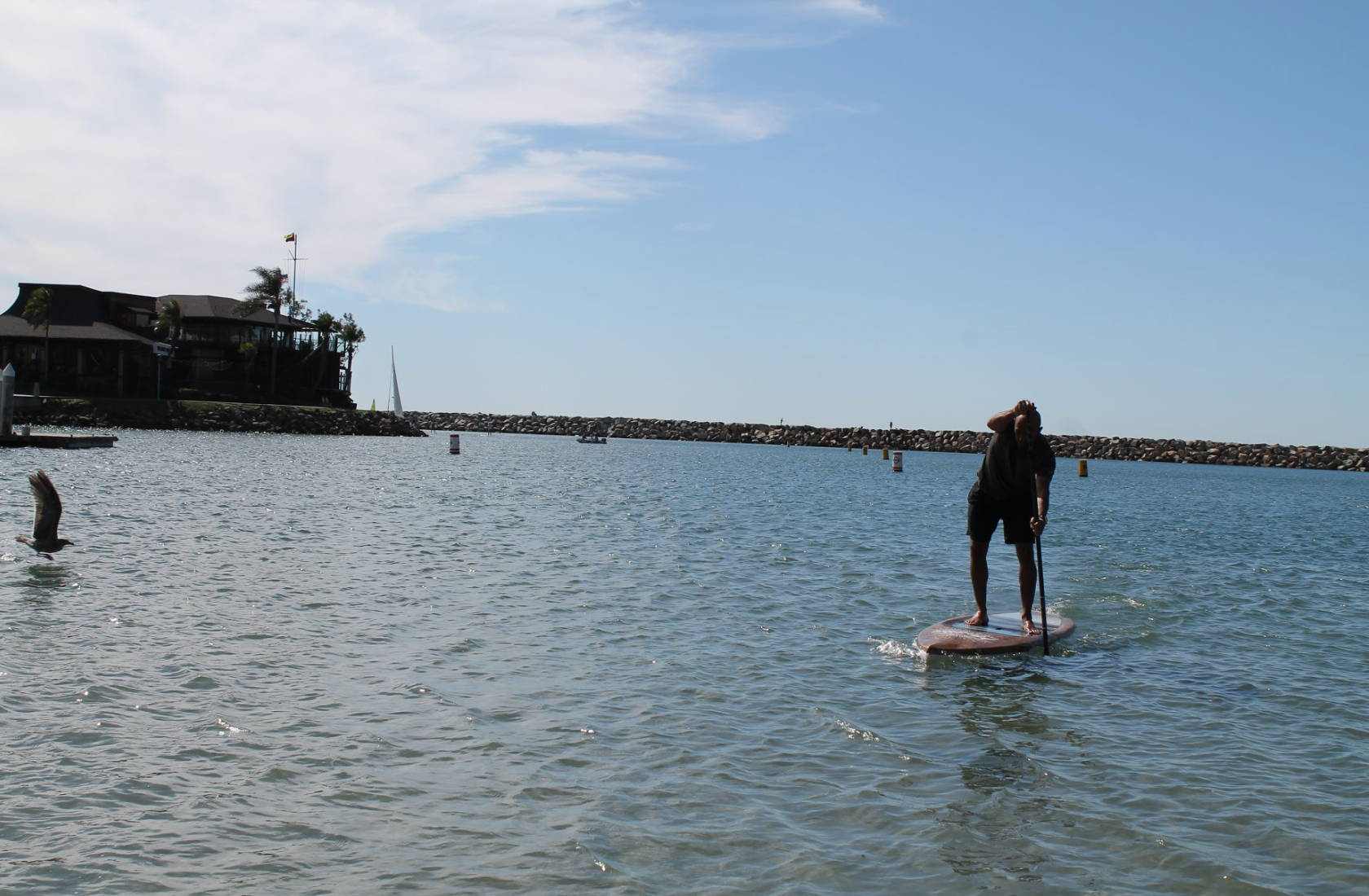 Malibu Wood WFT paddles in Dana Point at Baby Beach