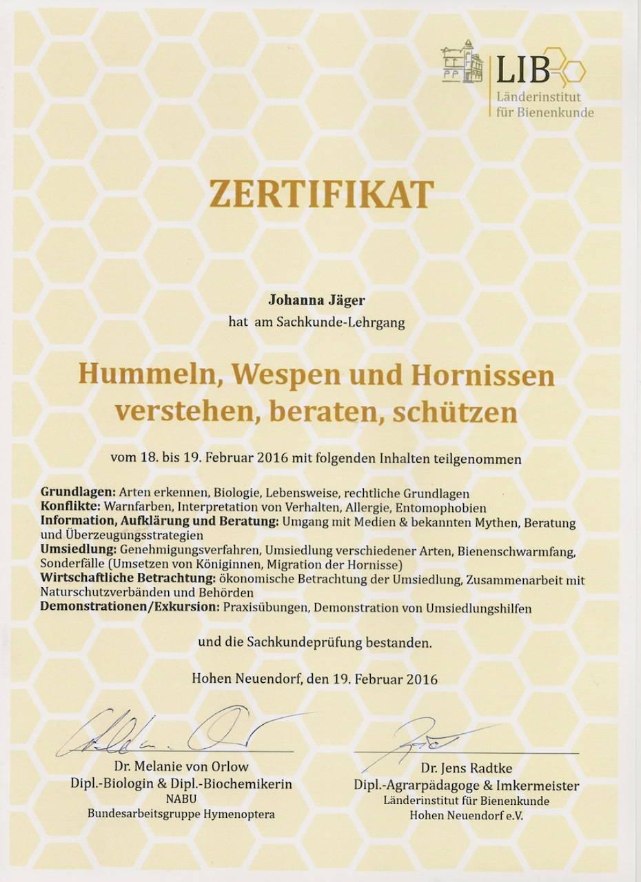 Zertifikat Hummeln, Wespen und Hornissen verstehen, beraten und schützen