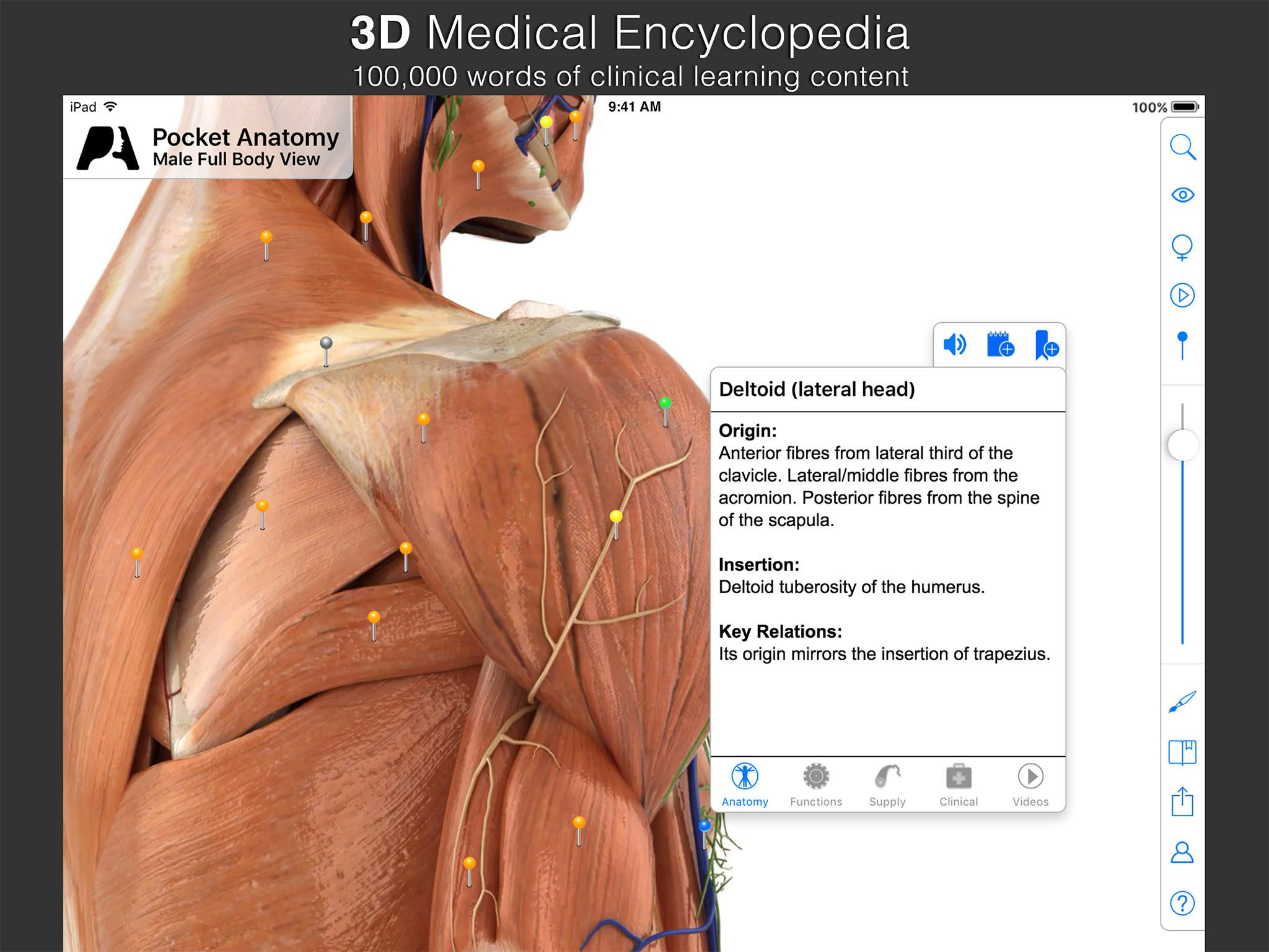 7 Best iOS anatomy apps as of 2018 - Slant