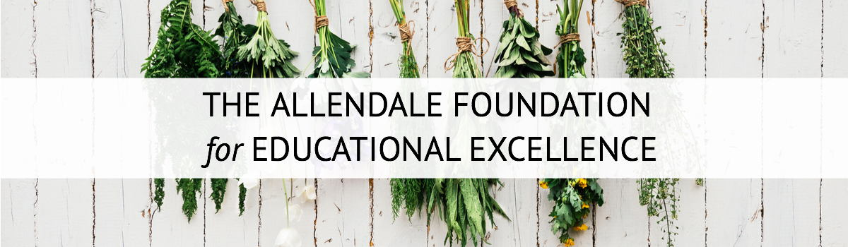 Allendale Foundation for Educational Excellence