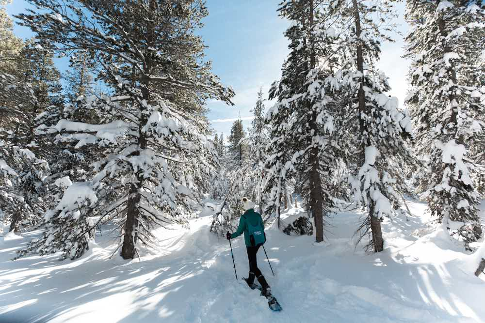 Reno Tahoe snowshoe woman in forest