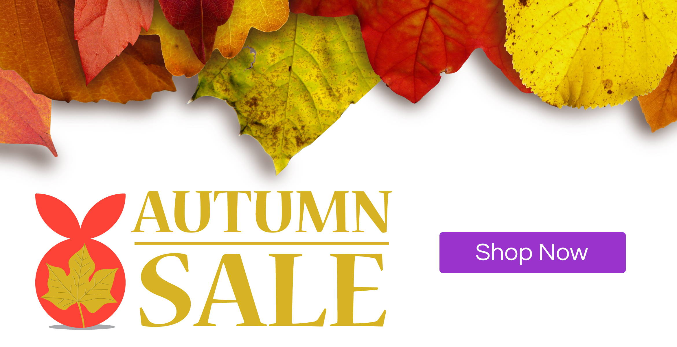 Mumberry Autumn Sale