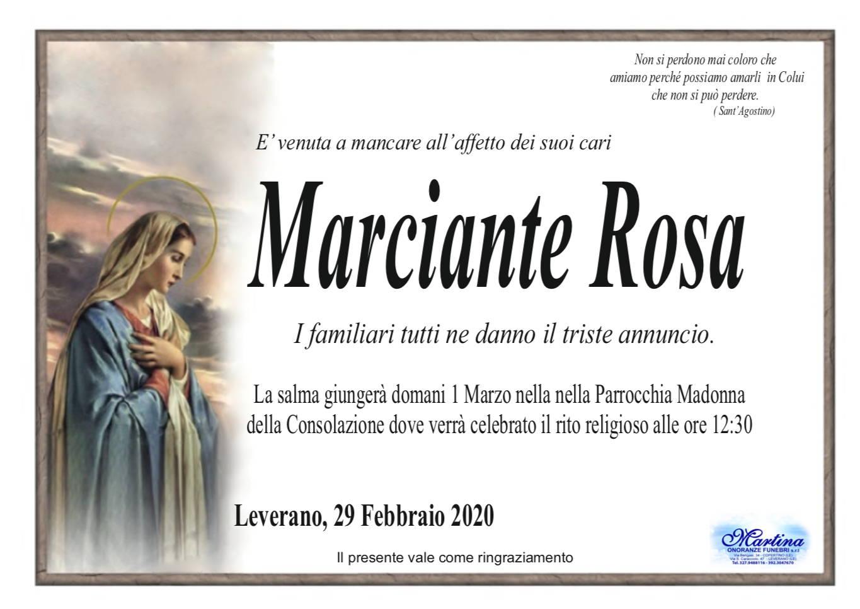 Rosa Marciante