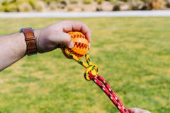 Part 4 Setting Up Runball Outdoor Dog Toy