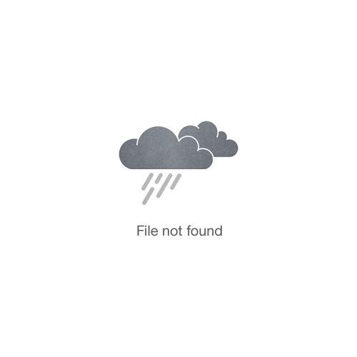 Northface one piece infant snow suit