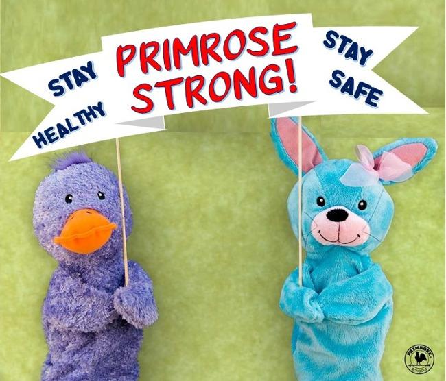 Primrose Strong!