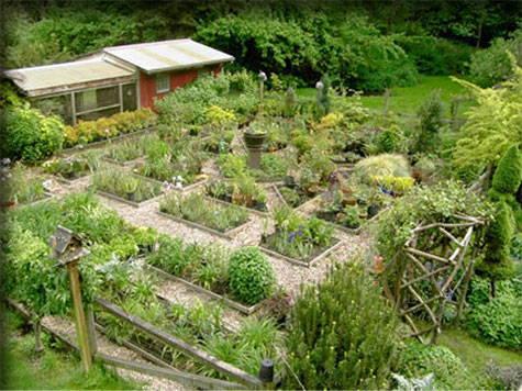 on the farm blog