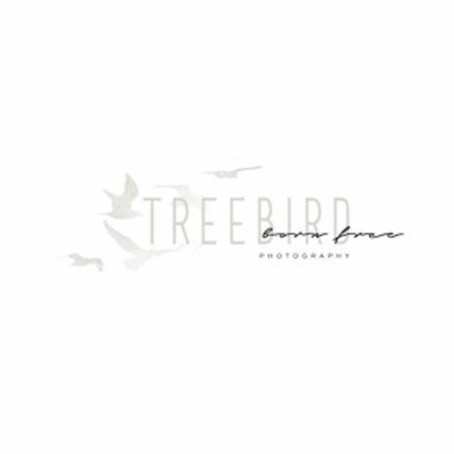 Treebird Photography