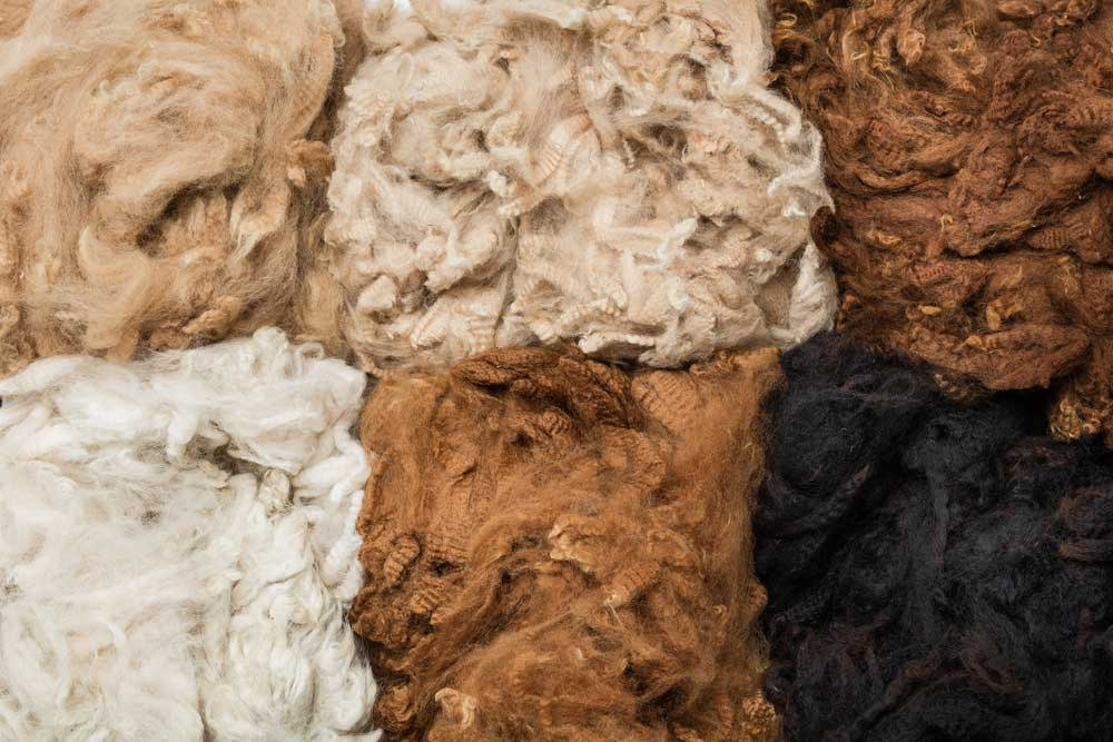 Alpaca is a soft fabric similar to wool, but notably different with respect to its impact on the environment.