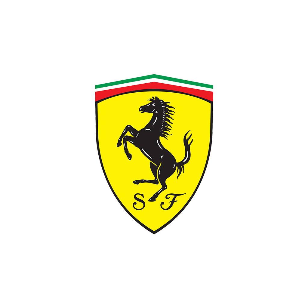 Ferrari Scrape Armor Bumper Protection