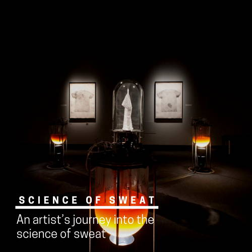 Take a look at the science of sweat.