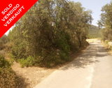 Llucmajor, Mallorca - Llucmajor plot 1 sold.jpg