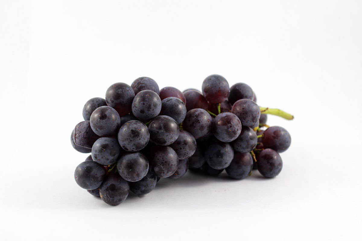 Concord Grapes - Souto Farms Fresh BC Fruit
